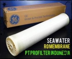 d GE Osmonics Seawater RO Membrane Indonesia  large